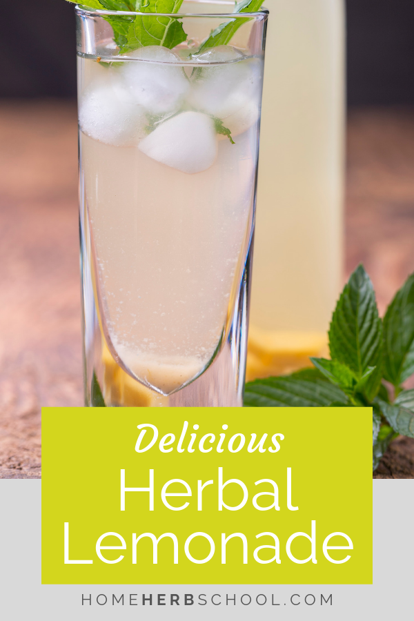 This delicious herbal lemon tea recipe shows us that herbalism can be easy and good tasting. #HerbalTea #HerbalLemonade #Herbalism #HerbalMedicine