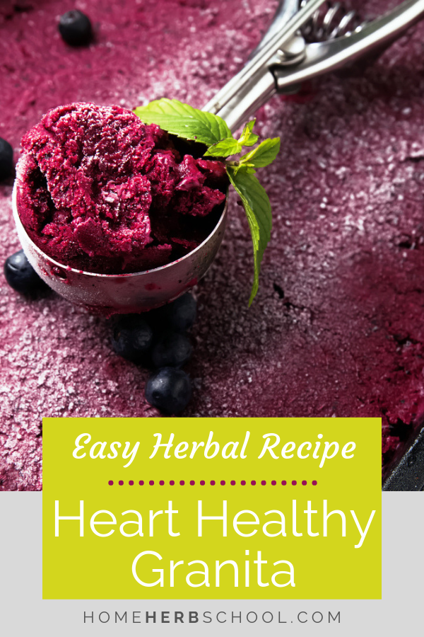 Of all the heart healthy desserts, this easy, delicious granita stands out above the rest! It's made from blueberries and hawthorn berries, two favorites in herbalism. #Herbalism #HerbalMedicine #HeartHealth