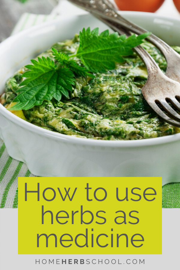 Discover how to use medicinal herbs as food. Herbalism can be creative and delicious. You probably already cook with medicinal herbs all the time without even knowing it. Many of our favorite culinary herbs are exceptional medicine. These include pepper, basil, ginger, oregano, garlic, thyme and cinnamon. #OnlineHerbalismCourses