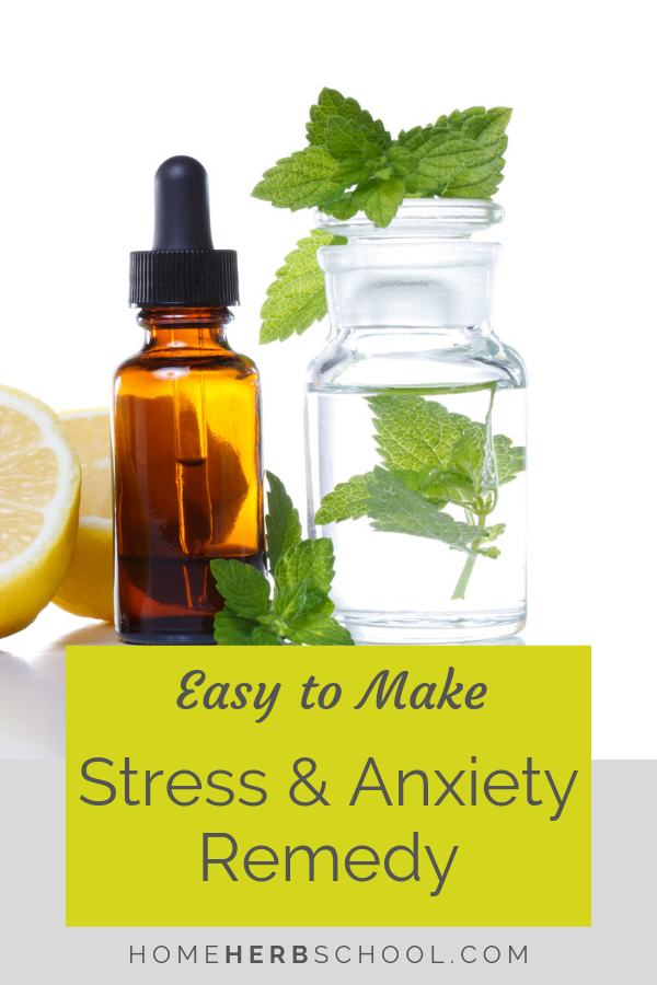 This easy to make tincture includes some of the best natural remedies for stress and anxiety known to herbalism. Medicinal plants include lemon balm, skullcap, lemon verbena and oats. #Herbalism #HerbalMedicine #StressAnxiety