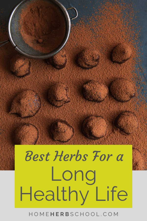 This delicious recipe includes medicinal herbs for longevity. In herbalism, these herbs are known as adaptogens. #Herbalism #HerbalMedicine #Adaptogens