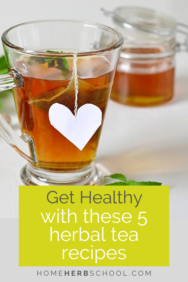 Enjoy healthy herbal tea recipes that help to maintain and improve overall health. Herbal teas are a great way to learn about herbalism and it's benefits. They include lemon balm, chamomile, green tea, passion flower, dandelion, chicory, nettles, ginger, peppermint and more. #HerbalismCourses #HerbalMedicineCourses
