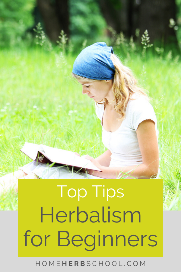 Discover the top tips for herbalism for beginners. You will learn the best herbs to start with as well as how to begin with these herbal medicines. #LearningHerbalism #LearnMedicinalPlants #HerbalismCourses