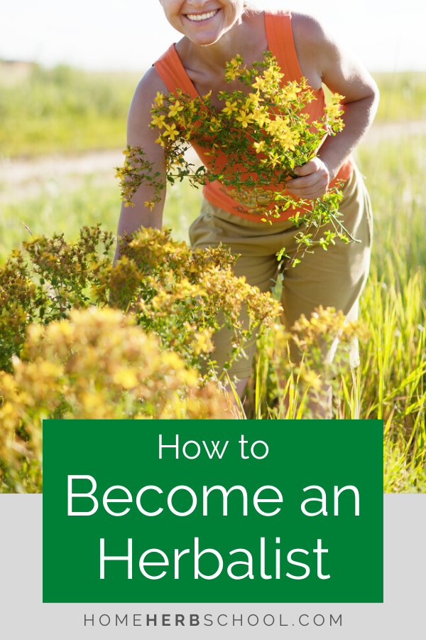 Becoming an herbalist can include clinical herbalism, manufacturing herbal products, medicinal plant farming, wild harvesting, teaching, writing and more. Now is a great time for learning how to be an herbalist. Click to start your journey.