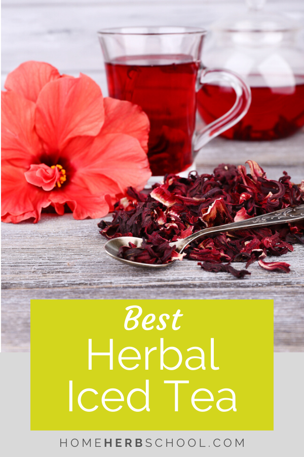 Discover which herbs make the best herbal iced tea. These tasty and beneficial medicinal plants include hibiscus, lemon balm, lemon verbena, green tea, peppermint, spearmint, rose and elder flower. #herbalism #OnlineHerbalismCourse