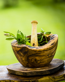Free mini online herbalism course